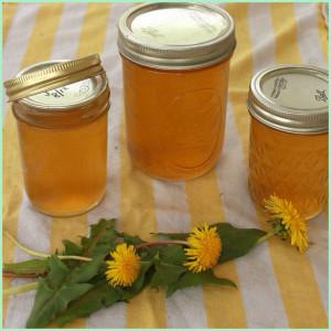 рецепт варенья из одуванчиков с медом