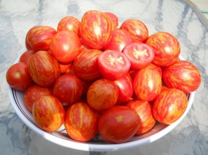 помидоры в тарелке
