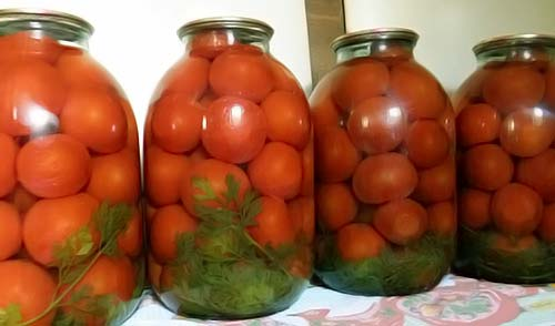 томаты с морковными листьями в банках