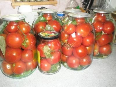 квашеные красные помидоры