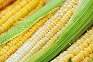 kukuruznyj-pochatok